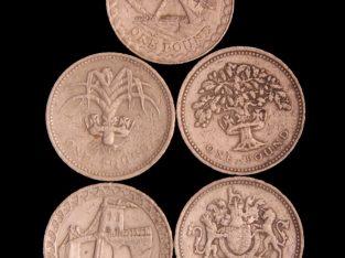 5 skirtingos vieno svaro monetos
