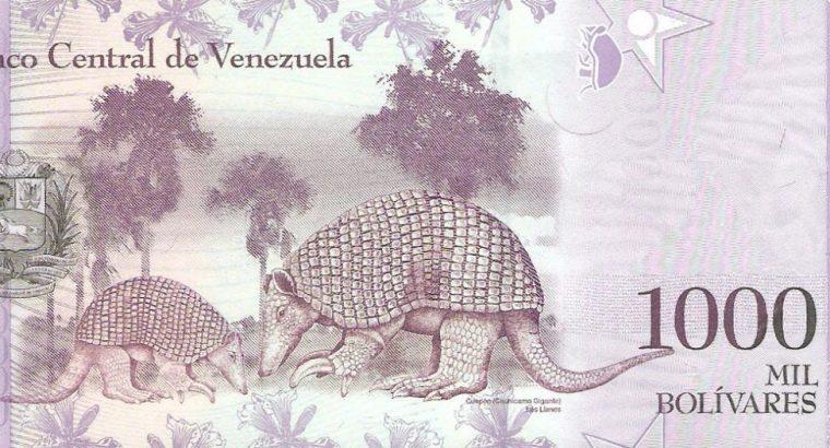 1000 Venesuelos bolivarų banknotas, UNC