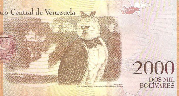 2000 Venesuelos bolivarų banknotas. UNC