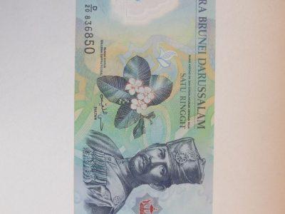 1 doleris , Brunėjus , 2011 unc polimeras